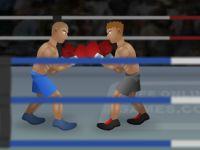 Boxen Meisterschaft